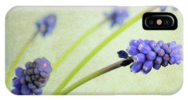 Hyacinth Grape IPhone Case