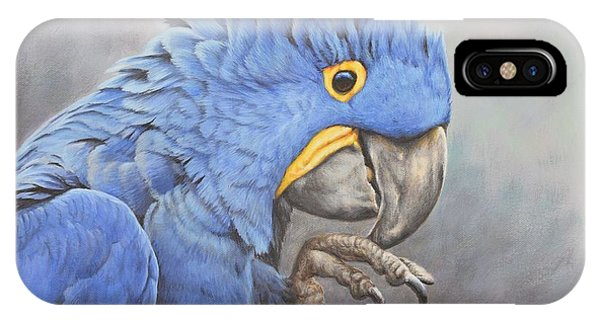 IPhone Case featuring the painting Hyacinth Macaw by Alan M Hunt