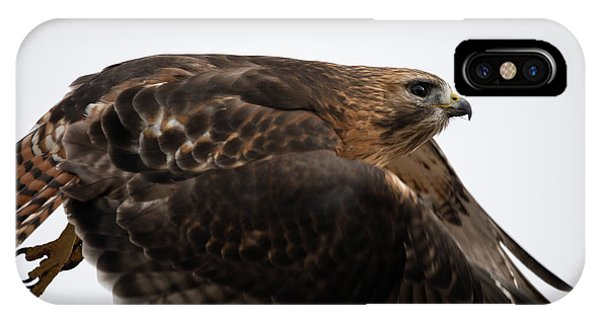 Hybrid Hawk Flyby  IPhone Case