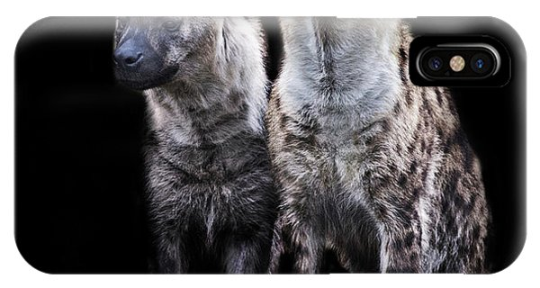 Griffon iPhone Case - Hyena Lookout by Martin Newman