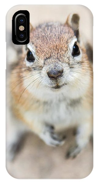 Hypno Squirrel IPhone Case