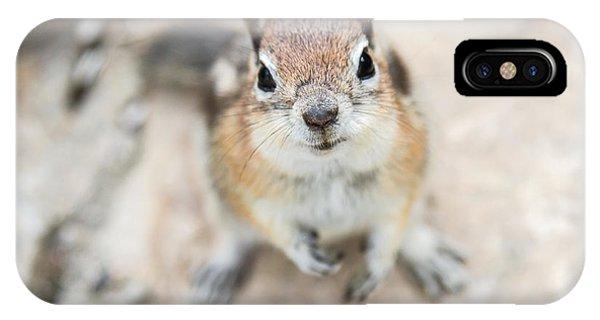 Hypno Squirrel IPhone Case