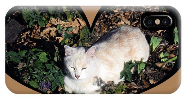 I Chose Love With A Cat Enjoying Catnip In A Garden IPhone Case