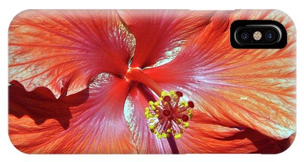 I Love Orange Flowers 2 IPhone Case