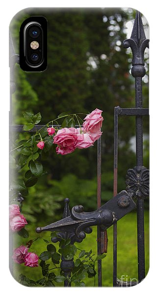iPhone Case - I Never Promised You A Rose Garden by Margie Hurwich