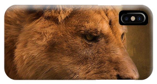 I Promise - Lion Art IPhone Case