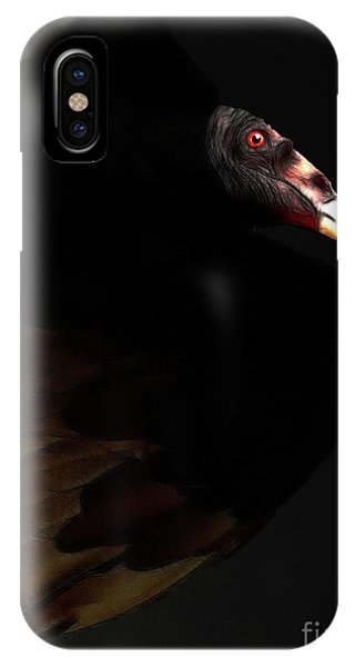 Wingsdomain iPhone Case - I Saw The Vulture In My Dreams Again by Wingsdomain Art and Photography