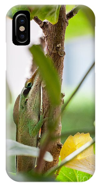 IPhone Case featuring the photograph I See You by Sandy Adams
