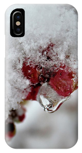IPhone Case featuring the photograph Ice Drip by Melinda Blackman