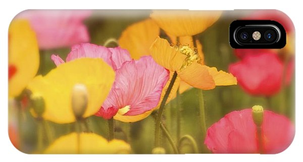 Iceland Poppies Warmly IPhone Case