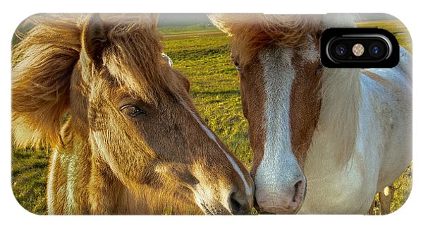 Icelandic Horses IPhone Case