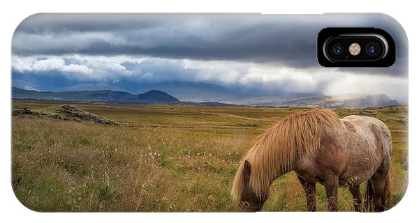 IPhone Case featuring the photograph Icelandic Pastoral With Iconic Horse by Rikk Flohr