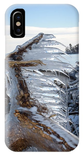 Icy Claw IPhone Case