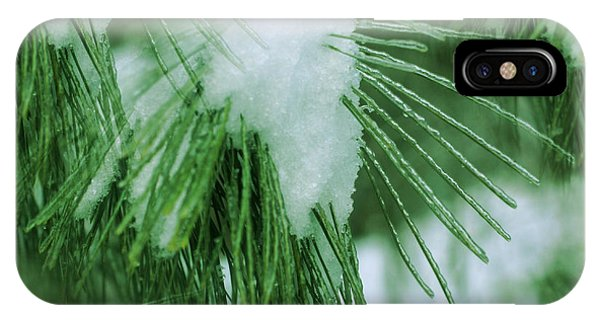 Icy Pine Needles IPhone Case