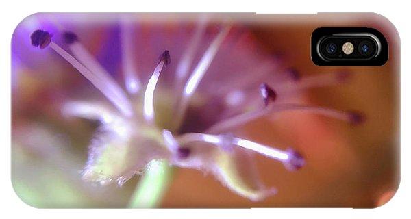 Idora Park Original Concept Art IPhone Case