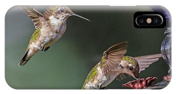 Beautiful Hummingbird iPhone Case - The Longest Wait by Betsy Knapp