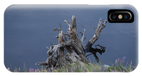 IPhone Case featuring the photograph Stump Chambers Lake Hwy 14 Co by Margarethe Binkley