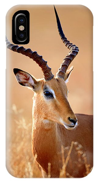 Head And Shoulders iPhone Case - Impala Male Portrait by Johan Swanepoel