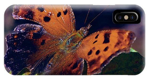 Shrub iPhone Case - Imperfect Satyr Comma by DigiArt Diaries by Vicky B Fuller