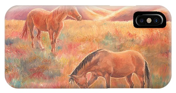 Impressions At Sunset IPhone Case