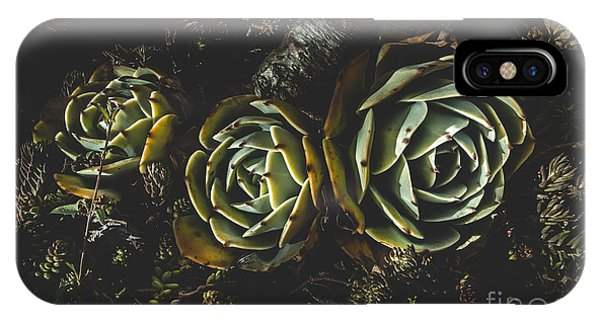 Adapted iPhone Case - In Dark Bloom by Jorgo Photography - Wall Art Gallery