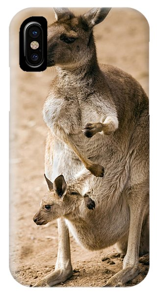 Kangaroo iPhone Case - In  Mother's Care by Mike  Dawson