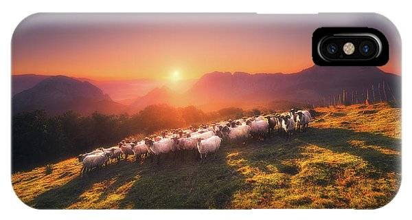 In Saibi With Companionsheep IPhone Case