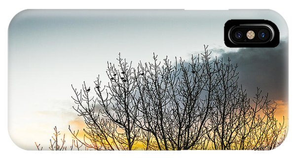 Deciduous iPhone Case - In Silhouette Of Birds And Twigs by Jorgo Photography - Wall Art Gallery