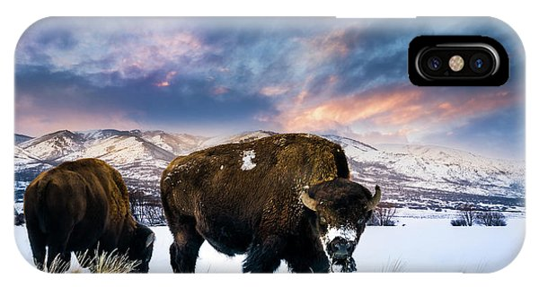 In The Grips Of Winter IPhone Case