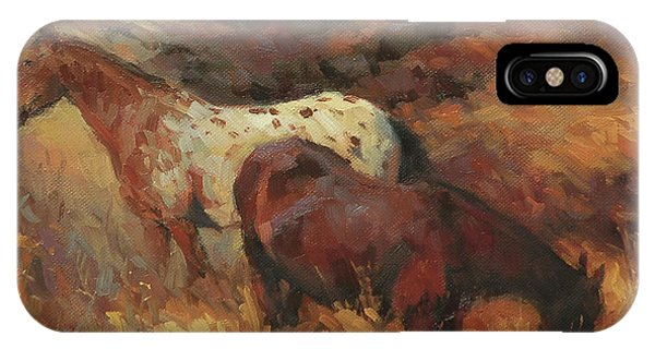 Equine iPhone Case - In The Hollow by Steve Henderson