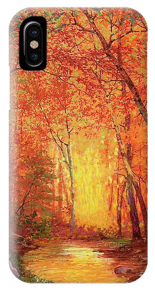 Orange Sunset iPhone Case - In The Presence Of Light Meditation by Jane Small