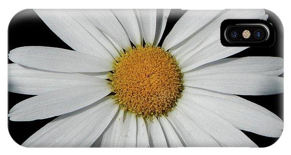 In The Spotlight White Daisy IPhone Case