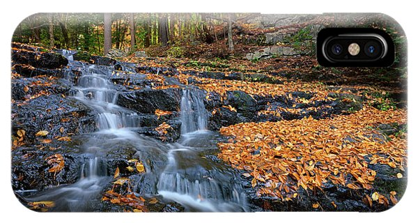 New England Fall Foliage iPhone Case - In The Woods by Rick Berk