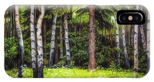 Salo iPhone Case - In The Woods by Veikko Suikkanen