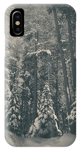 Sierra Nevada iPhone Case - In Time by Laurie Search