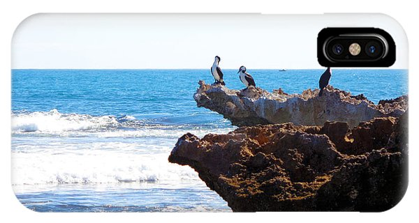 Indian Ocean Birds Resting On Rocks IPhone Case