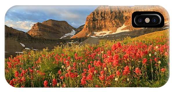 Indian Peaks Wilderness iPhone Case - Indian Paintbrush On Timpanogos. by Johnny Adolphson
