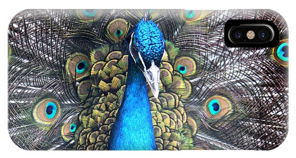 Indian Peacock IPhone Case