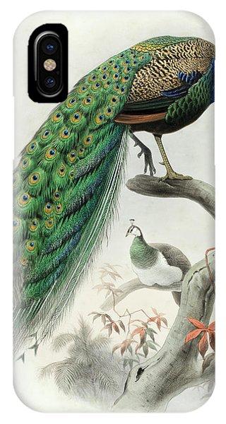 Peafowl iPhone Case - Indian Peafowl by Daniel Giraud Elliot