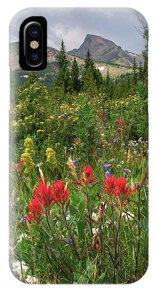 Indian Peaks Wilderness iPhone Case - Indian Peaks Paintbrush by Aaron Spong