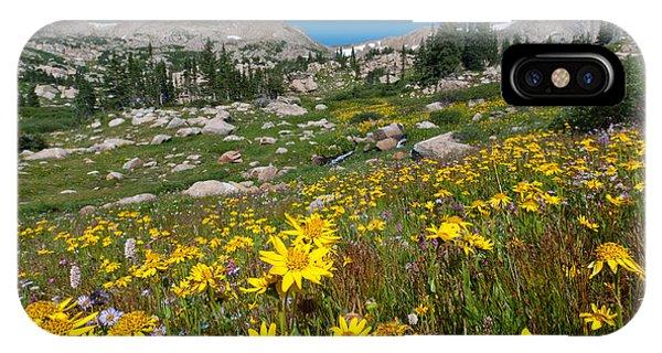Indian Peaks Summer Wildflowers IPhone Case