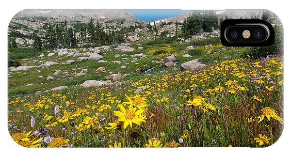 Indian Peaks Summer Wildflowers IPhone Case