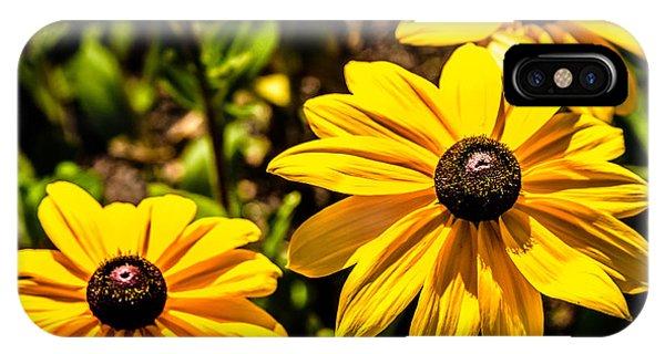 Indian Summer Gloriosa Daisy IPhone Case