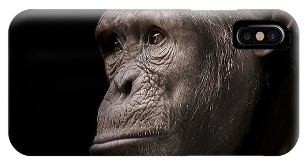 Chimpanzee iPhone Case - Indignant by Paul Neville