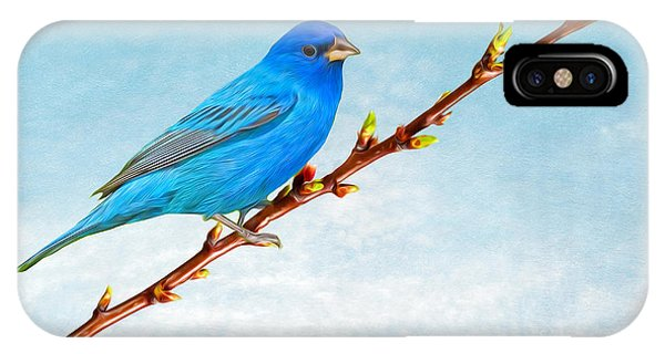 Bunting iPhone Case - Indigo Bunting by Laura D Young