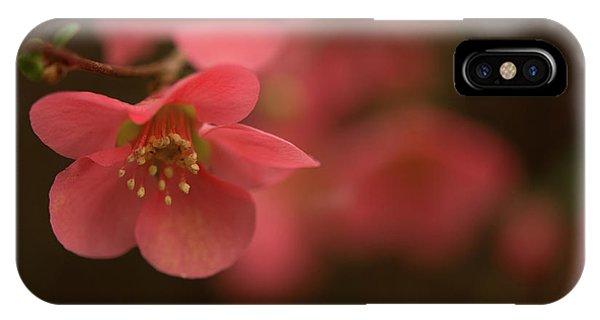 Infinite Pink IPhone Case