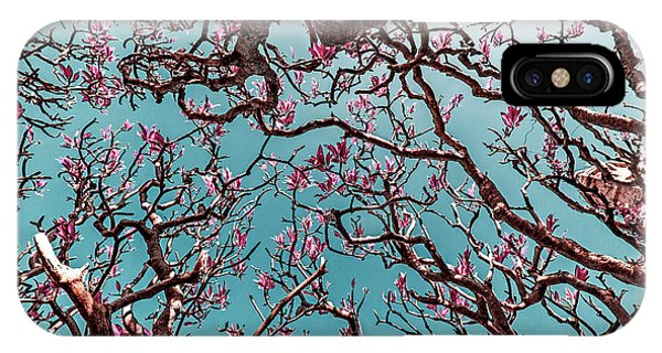 Leave iPhone Case - Infrared Frangipani Tree by Stelios Kleanthous