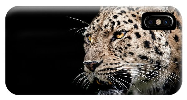 Big Cat iPhone Case - Inner Strength  by Paul Neville