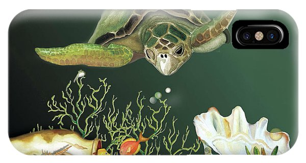 Inquisitive Turtle IPhone Case