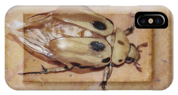 Insect On Wooden Board IPhone Case